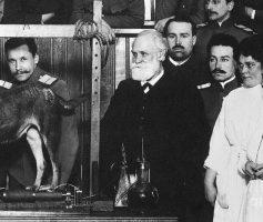 O cão de Pavlov e como ele descobriu o condicionamento clássico